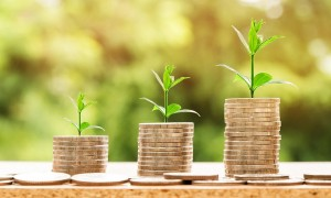 Pila di monete da bonus - Foto: Pixabay