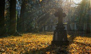 Ognissanti: la croce illuminata dal sole all'interno di un Cimitero- Foto: Pixabay