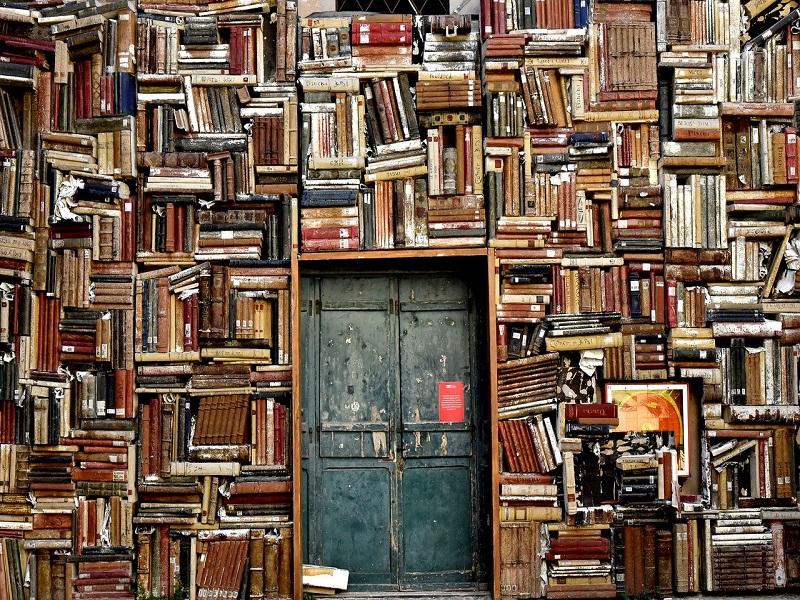 Borse di studio: una Biblioteca - Foto: Pixabay
