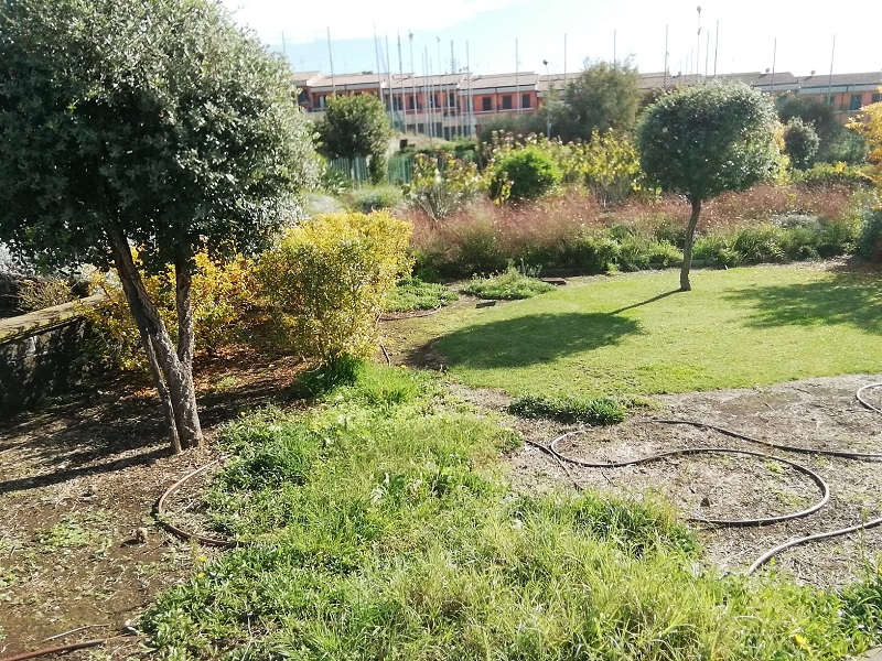 Parco Fiume: alberi ed aiuole - Foto: Cavaleri Francesca Agata