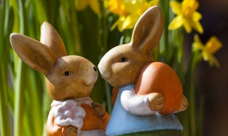 Pasqua Solidale: Coniglietti foto: Pixabay